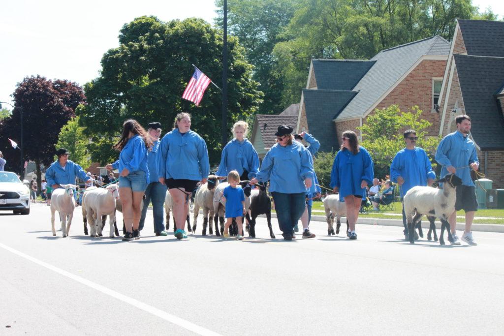 Group of people in blue sweatshirts walking goats.